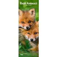 2019 Calendar, Baby Animals Slimline Wall Calendar by Browntrout NEW