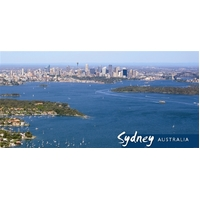 Steve Parish Postcard (Panoramic): Sydney City & Harbour Pack of 20