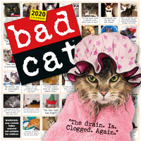 Bad Cat 2020 Square Wall Calendar by Workman