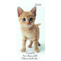 Cute Kittens 2020 Pocket Diary by Gifted Stationery