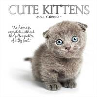 2021 Calendar Cute Kittens Square Wall By The Gifted Stationery GSC19895