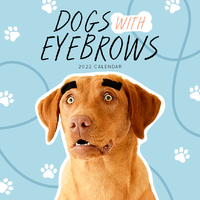 2020 Dogs with Eyebrows Square Wall Calendar by Paper Pocket 81307