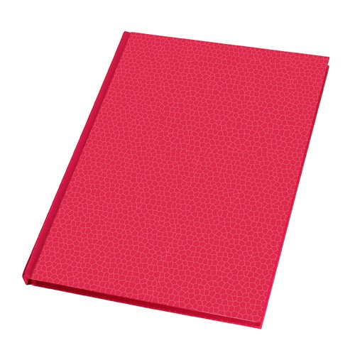 2021 Diary Everyday A5 Week to View Pink by Last Diary Company EA57HP