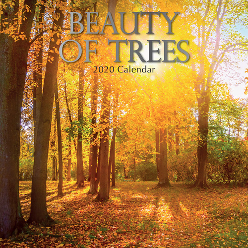 Beauty of Trees 2020 Square Wall Calendar by Gifted Stationery